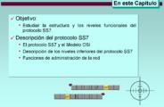 DescripcionSS7 (2)
